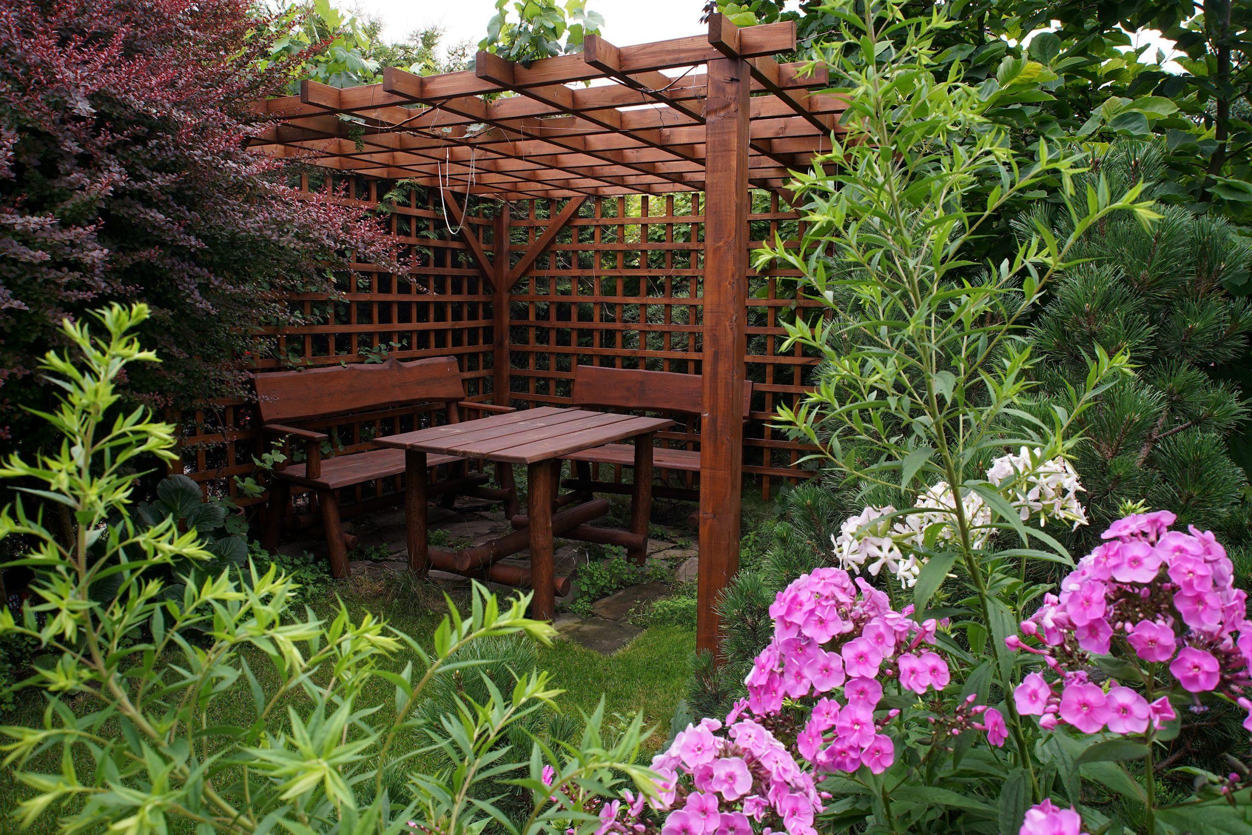 Drewniana altana ogrodowa w otoczeniu roślin i kwiatów