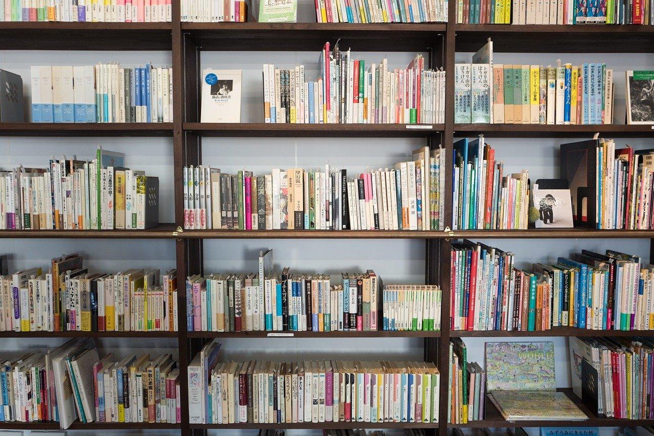 Ciekawe pomysły na zaaranżowanie domowej biblioteczki z regału na książki